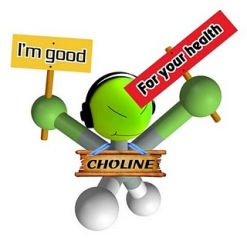 choline dude